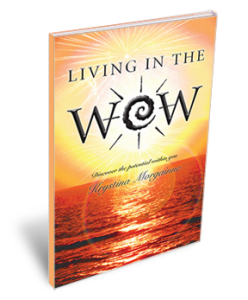 wow-bookcover-4in